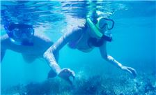 Pacific Island Clubs Amenities - Snorkeling