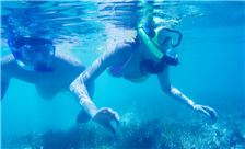 Pacific Island Club Saipan - Sports - Snorkeling